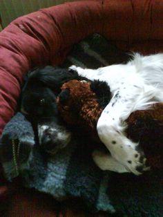 Cuddling his teddy