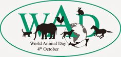 World Animal Day is celebrated each year on October the 4th. It started in Florence, Italy in 1931 at a convention of ecologists.On this day, animal life in all its forms is celebrated, and special events are planned in locations all over the globe. The 4th of October was originally chosen for World Animal Day because it is the feast day of Francis of Assisi, a nature lover and patron saint of animals and the environment.