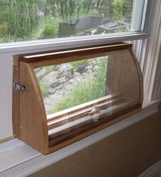 This would be awesome-Deluxe In-House Window Bird Feeder lots of fun to watch the birds in this!