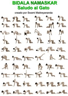 Crystal Clear Sun Salutation Video Teaches How To Do Surya Namaskar And Breaks Down The Poses Is Perfect Yoga Flow