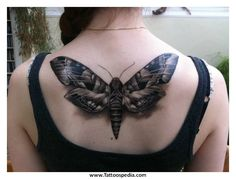 Grey Ink Moth Tattoo On Girl Upperback Luna Moth Tattoo, Moth Tattoo Design, Tatoo Designs, Tattoo On, Realistic Butterfly Tattoo, Unique Butterfly Tattoos, Black Butterfly Tattoo, Butterfly Tattoo Designs, Frases