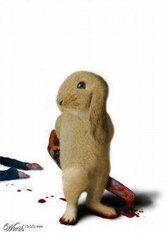 Killer Bunny
