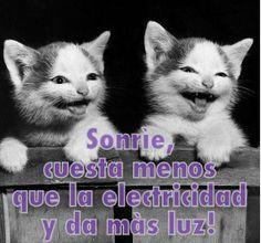 Sonríe, cuesta menos que la electricidad y da más luz! #FelizTarde :) Danos like en Facebook: https://www.facebook.com/valoresparatodalavida