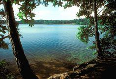 Tyler State Park Summer, Tyler, Texas | Flickr - Photo Sharing!