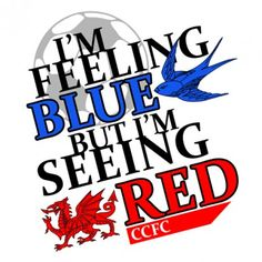2012 brought the controversial move from blue to red at Cardiff City Football Club