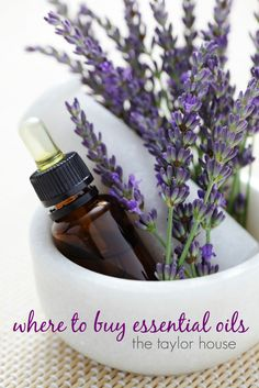 10 Lavender Oil Benefits for Major Diseases & Minor Ailments - Dr. Axe 10 Lavender Oil Benefits for Homemade Lip Balm, Homemade Vanilla, Homemade Cheese, Buy Essential Oils, Essential Oil Blends, Lavender Oil Benefits, Lavendar Oil, Coconut Oil Uses, Lotion Bars