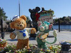 """spot Photo de «marché de Pâques de Duffy"""" apparu sur Cape Cod!"""
