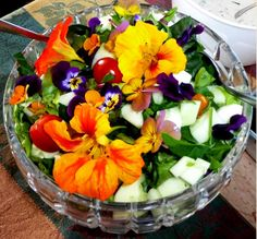 Have you ever engaged in Salad Art?  The colorful phyto-nutrients keep your every cell nurtured.