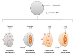 Figure 2 Schematic differences between nanocapsule, nanostructured lipid carrier, polymeric nanoparticle, and solid lipid nanoparticle drug delivery systems.