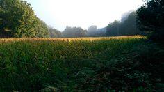 El #CaminodeSantiago es indescriptible. Tienes que vivirlo para sentirlo.  www.caminodesantiagoreservas.com