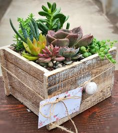 """Please read full description and shop policies before purchase. This wooden drawer planter is a perfect touch to add to any desk or table setting. It could be used as a gift for a friend or loved one, or simply for yourself. Included is {1} wooden drawer arrangement that will look {similar} to the one pictured. All succulent arrangements are {live} and one-of-a- kind, no two are the same! This 6.5""""L X 6""""H X 4W box is lined with plastic and includes a drain hole. If you are located in areas…"""