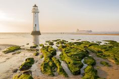 New Brighton Lighthouse at sunset by medwards2 on 500px