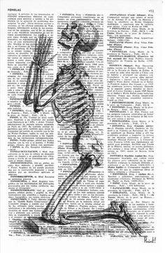 Praying Skeleton  Dictionary Book Page Print  Anatomy por PRRINT