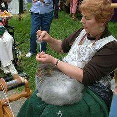 З якої тварини отримуємо ангорську вовну? з кроля! На сьогодні 90% ангорської вовни поставляється з Китаю, де вирощується близько 50 мільйонів ангорських кроликів. Шерсть відома своєю м'якістю, шовковистою гладкістю і відмінними ізоляційними властивостями. (Технічно це не шерсть, а волосся)