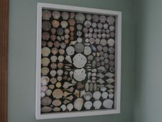 DIY Sea Shell Display - I'm trying to get inspired