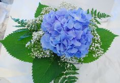 single hydrangea arrangement