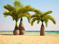 10 pcs/bag Bottle palm tree seeds,Exotic Plants Tree Bonsai Pots Planters Tropical Ornamental Balcony for Home & Garden