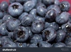 A heap of blueberries fruit in a pink bowl closeup Pink Bowls, Blueberry Fruit, Blueberries, Close Up, Photography, Image, Berry, Photograph, Blueberry