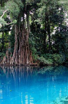 Matavulu Blue Hole in Espiritu Santo Island, Vanuatu
