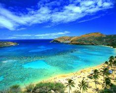 """O incrível """"Mar de Sete Cores"""" do arquipélago colombiano de San Andrés. As tonalidades de azul e verde que pintam as águas ocorrem devido a variação de profundidade combinada com a incidência de luz solar. Espetacular!"""