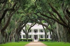 Stock Photo - Rosedown plantation antebellum mansion house near the town of Francisville, Louisiana, USA Louisiana Plantations, Cedar Falls, Antebellum Homes, Home Porch, Unusual Homes, Plantation Homes, Formal Gardens, Unique Architecture, Mansions Homes