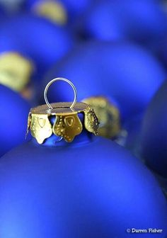 Take Some Shots Of Bulbs Have N Up For Great Holiday Decoration Kelly Connell Blue Dreaming