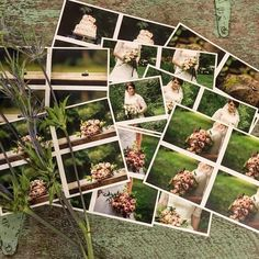 I finally got some of my wedding photos printed! ���� . . . #wedding #weddingdress #bride #brides #bridesmaids #photo #photos #photography #thistle #green #wood #woodgrain #plants #pictures #costco #life #everyday #love #everydaylife #style #styles #instagood http://gelinshop.com/ipost/1515703228742154026/?code=BUI3A5WFrcq