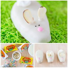 Easter Bunny Treats …the most adorable bunny race cars and chocolate peanut butter bunnies! Your kids will love these mini desserts for Easter