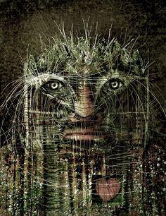 Image result for forest man