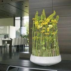 Businessfloristik: Sommergelbe Blüten XXL