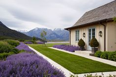 A garden enveloped by the spectacular landscapes of New Zealand's South Island