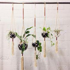 love the copper accent / Macramé Plant Hanger  / Nicole Musgrave