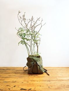 alternative planters - Google Search