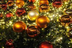 weihnachtskugeln am tannenbaum