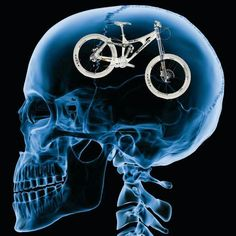 Cycling on the brain