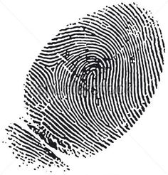 Illustration about Very detailed Fingerprint, available as EPS vector or JPG. Illustration of people, isolated, hand - 334491 Vector Design, Design Art, Eps Vector, Vectors, Images, Royalty Free Stock Photos, Design Inspiration, Clip Art, Art Things