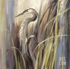 Coastal Heron Art Print by Brent Heighton at Art.com