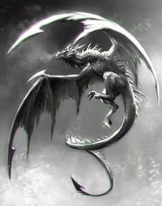 White and Grey Dragon
