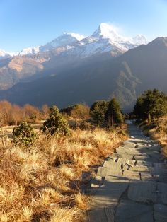 Join me in the third (and most spectacular) day of the Poon Hill trek - an epic sunrise from Poon Hill, then trekking through canyons during a snowstorm!