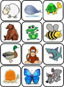 images flashcards animaux Flashcards Anglais, Develop Pictures, Cycle 2, English Vocabulary, Preschool, Clip Art, Drawings, Creative, Printables