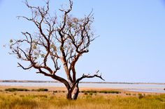 An Ancient Land – An Ancient People (Peery Lake, Outback Australia)