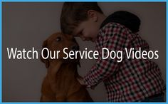 Service dogs are a miracle for those with an invisible illness, including diabetes, autism, Aspergers and seizures. Learn more about SDWR's service dogs.