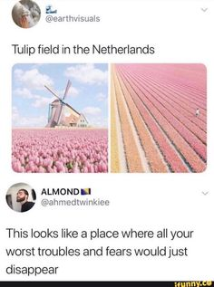 Tulip field in the Netherlands This looks like a place where all your worst troubles and fears would just disappear - iFunny :) Beautiful Places To Travel, I Want To Travel, Oh The Places You'll Go, Cool Places To Visit, Adventure Is Out There, Dream Vacations, Vacation Places, Adventure Travel, Cool Pictures