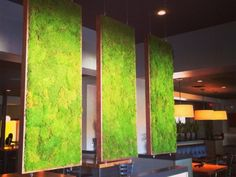 Moss walls: the newest trend in biophilic interiors | Inhabitat - Green Design, Innovation, Architecture, Green Building