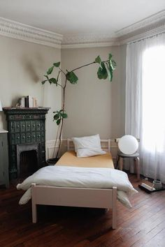 there's a fiddle leaf fig watching over you
