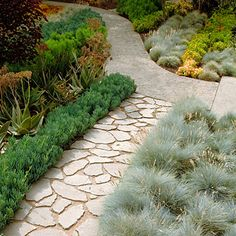 Channel rainwater A permeable pathway made of broken concrete packed with sand allows rainwater to pass into the ground, where it's accessible to plant roots.