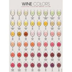 """""""WINE COLORS"""" Poster  Size: 68x91 cm (26.5 x 35.5 inches)   Elegantly designed to improve your wine knowledge An attractive addition to any kitchen, wine cellar, or restaurant An ideal gift for all wine lovers"""