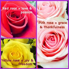 52 Rose Colors Meanings Ideas Rose Color Meanings Color Meanings Rose Color