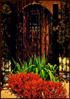 beautiful shot of an old gate
