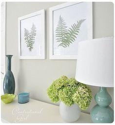wall art, frame fern, color schemes, botanical prints, diy art, frames, art displays, ferns, diy projects